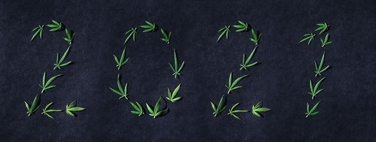 pattern of cannabis leaves in the form of numbers HGRUEY8