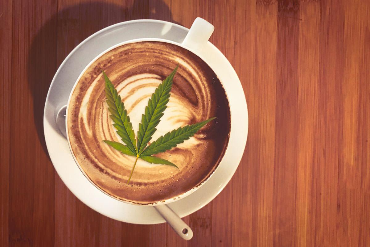 marihuana cafe